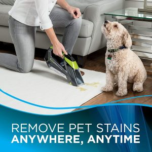 best stain remover
