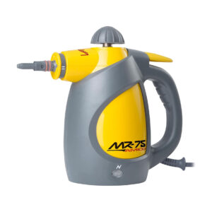 professional steam cleaner